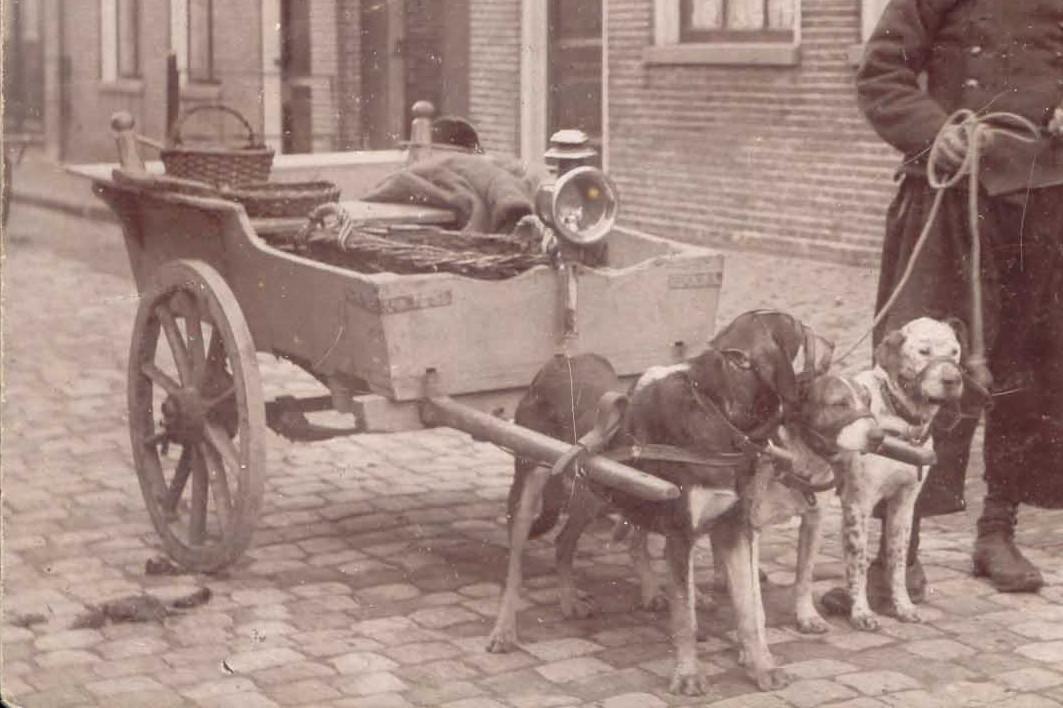 Transportbedrijf oud in 1908